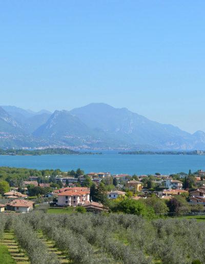 Vista lago / Lake view / Seeblick